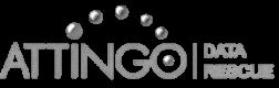 Attingo Data Rescue